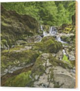 Four Falls Walk Waterfall 3 Wood Print