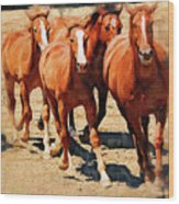 Four Horses Running Wood Print