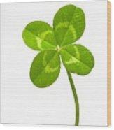 Four-leaf Clover Wood Print by David Nunuk