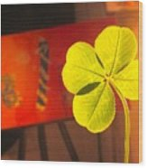 Four Leaf Clover In Studio 1 Wood Print