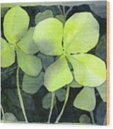 Four Leaf Clover Watercolor Wood Print