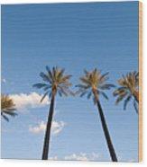 Four Palm Trees Wood Print