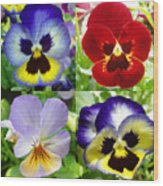 Four Pansies Wood Print