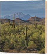 Four Peaks On The Horizon  Wood Print