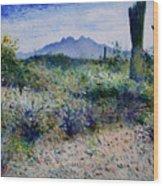 Four Peaks Phoenix Arizona Usa 2003  Wood Print