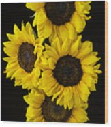 Four Sunny Sunflowers Wood Print