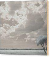 Four Trees Wood Print