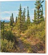 Four Wheeler Trail - Richardson Highway Wood Print