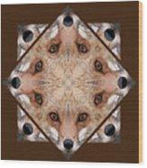 Fox Close Up Wood Print