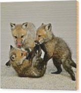 Fox Cubs At Play II Wood Print