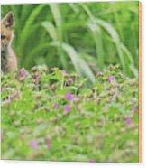 Fox In The Garden Wood Print