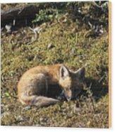 Fox Kit Wood Print