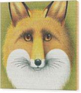 Fox Portrait Wood Print