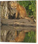 Fox Reflection Wood Print