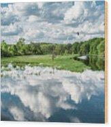 Fox River Wood Print