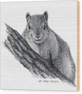 Fox Squirrel Wood Print