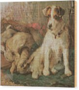 Fox Terrier With The Day's Bag Wood Print
