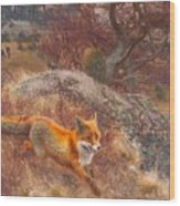 Fox With Hounds Wood Print