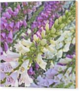 Foxglove Card Wood Print