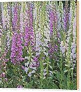 Foxglove Garden - Digital Art Wood Print