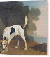 Foxhound On The Scent Wood Print by George Stubbs
