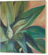 Foxtail Agave 4 Wood Print by Athena  Mantle