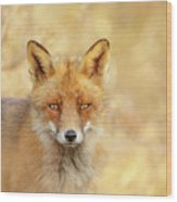 Foxy Faces Series- That Look Wood Print