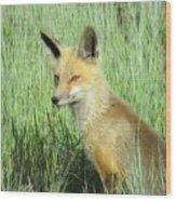 Foxy Lady Wood Print