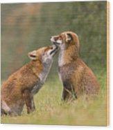 Foxy Love- Kiss Wood Print