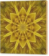 Fractal 10 Wood Print