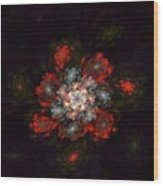 Fractal Floral 02-12-10-a Wood Print