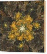 Fractal Floral 02-12-10 Wood Print