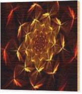 Fractal Floral 062610a Wood Print