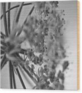 Fractal Flower Photoset 03 Wood Print