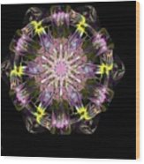 Fractal Flowers 10-20-09 Wood Print