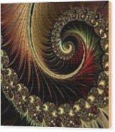 Fractalia Irmania Catus 1 No. 1 H B Wood Print