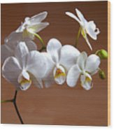 Fragile Orchid  Wood Print