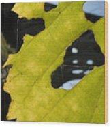 Framed Bridged Wood Print