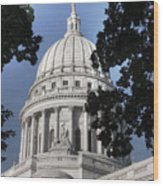 Framed Capitol Wood Print