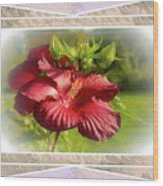 Framed Red Hibiscus Wood Print