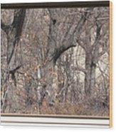 Framing Tangled Dunescape Wood Print