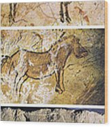 France And Spain: Cave Art Wood Print