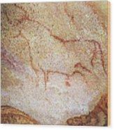 France: Cave Art Wood Print