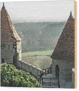 France - Id 16235-220244-1257 Wood Print