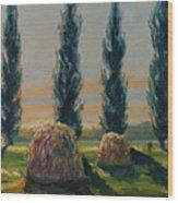 France Iv Wood Print