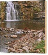 France Park Falls Wood Print