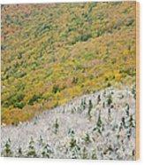 Franconia Notch State Park - White Mountains Nh Usa Autumn Wood Print