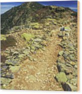 Franconia Ridge Alpine Trail Wood Print