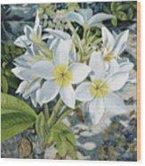 Frangipani Wood Print