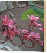 Frangipani Flowers Wood Print